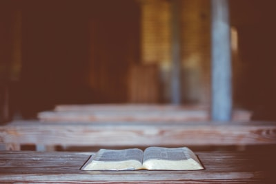 Book: The Bible is an Unquestionably Biblical Book